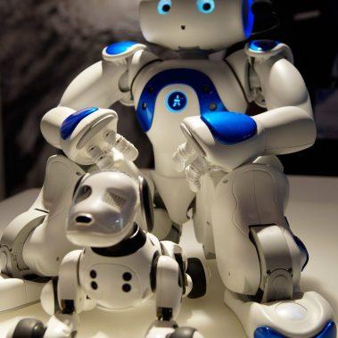 NAO mit Roboter Hund begutachtet